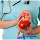 Третман-бубрега-инсуфицијенција