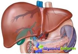 hemangioma hepática, doença hepática, do tumor, do fígado