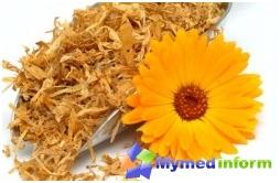 marigold, calendula tinktur, fingernegl, bruk calendula, ring egenskaper