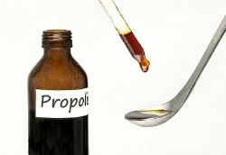 The use of propolis