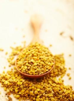 употреба полена, пчелињих производа, полена, полен-обнозхка