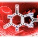 trazê-úrico-acid-organismo