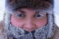 l'allergie, l'hiver, le gel, le froid