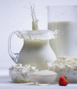 Kefir sopp medisin, melk sopp, drikke, tradisjonell medisin, alternativ medisin