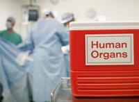 Dodatkowe organów
