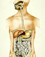 choroby przełyku