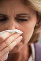 спринг алергија