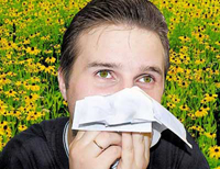 regras de alergia febre de feno 10