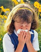 allergie Murderer lente