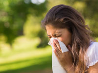 allergy survival guide spring