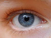 Trachoma: objawy i powikłania