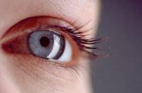 manifestation and treatment of trachoma