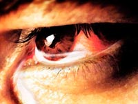 Les hommes ne pleurent pas