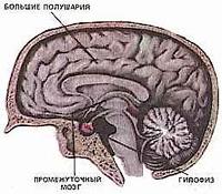 årsakene til akromegali