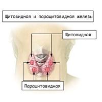 de viktigste symptomene på hypoparathyroidism