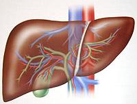 Was ist Hepatitis E