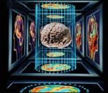како препознати шизофреније