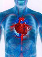 Årsaker, symptomer og behandling av hjerteinfarkt dystrofi