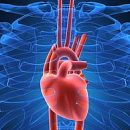 myocarditis causes treatment prevention