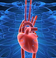 zapalenie mięśnia sercowego powoduje profilaktykę leczenia