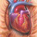 corazón ataque guía de supervivencia
