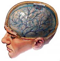 симптоми менингитиса