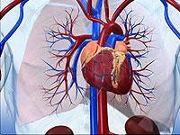 Why jumps pressure? Transient hypertension
