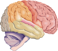Życie po obrzęku mózgu: Kulisy
