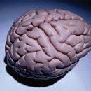 Parkinson-Krankheit Behandlung