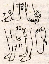 acupressure with vascular dystonia
