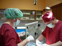 Методе дијагностике и лечења рака јетре
