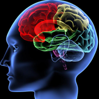 Diagnóstico e tratamento de tumores cerebrais