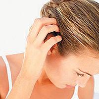 Pediculosis: Läuse sind unterschiedlich