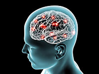 mentiras comunes sobre el cerebro