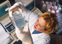 Citomegalovirus: el análisis y la interpretación de los resultados de la investigación
