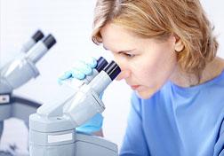 Херпес симплек вирус 1 ИгГ аналисис транскрипт
