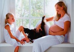 analizuje dekodowania toksoplazmozę w czasie ciąży