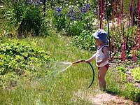 entrenamiento de seguridad para niños en la casa