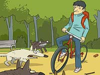 Meios de defesa de cães ciclista - destemor e bicicleta