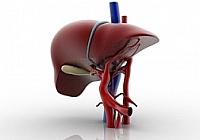 Objawy zapalenia wątroby typu C