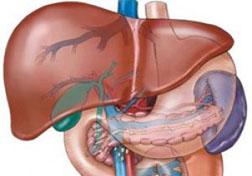 Marskość wątroby: objawy, przyczyny i leczenie etap