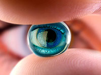 48 fun facts about the eyes