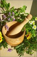 Plantevern mot erythrasma