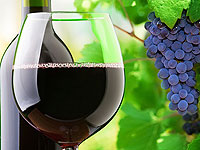 Wine Benefits: 3 factors that you do not know