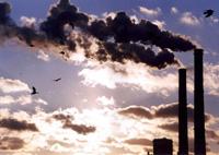 Indflydelse af miljø og sundhed