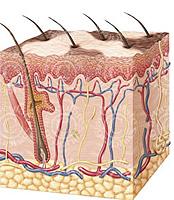 Los métodos de tratamiento de vitiligo