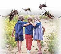 Malaria. Question answer