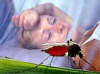 Malaria is niet enige ziekte, maar ook wetenschap