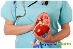 Helse på nyrene, blæren, nyresvikt, nyrer, urologi