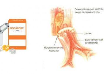 bioparoks-instructions